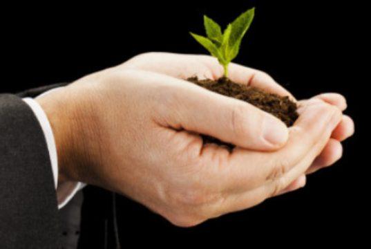 pre-seed start up bando regine lazio