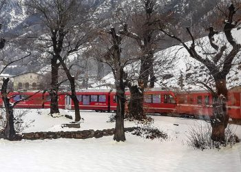 Trenino del Bernina Foto P. Russo/IT 24